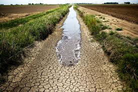 South Africa's coming drought